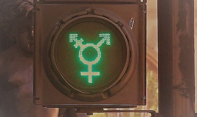 https://de.wikipedia.org/wiki/Gender-Symbol#/media/File:Diversit%C3%A4t_Ampel.JPG